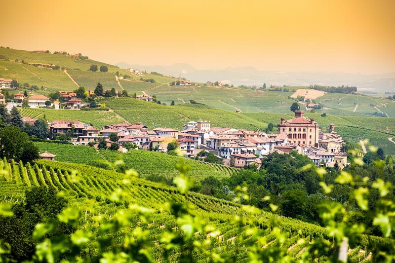Enoturismo: O que é e como escolher a melhor rota dos vinhos