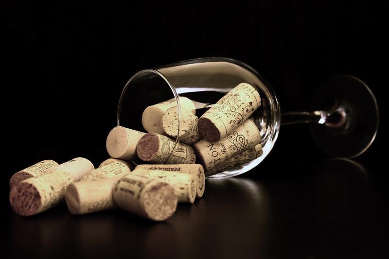 Os 2 Tipos de Adega de Vinho que Você Precisa Conhecer